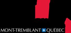 IMMT-Logo