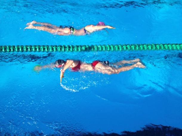 SwimTop